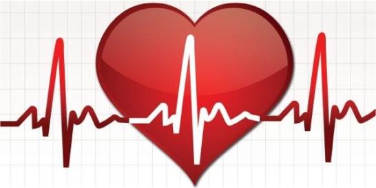 Il-cuore-di-tortona