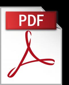 Versione PDF del programma (413Kb)
